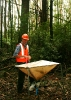 Native Forest Silviculture